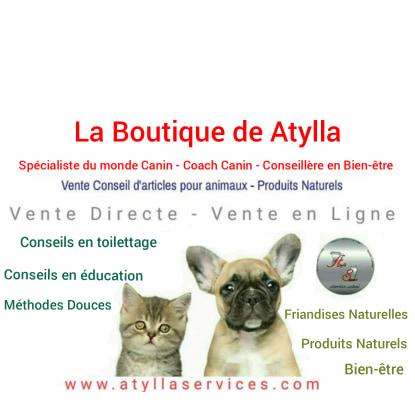 Atylla Services